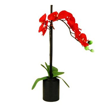 Designs by Lauren Artificial Orchid and Faux Bamboo Plant