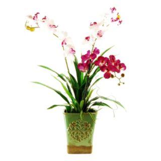 Designs by Lauren Artificial Orchid Trio Arrangement