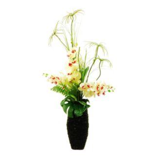 Designs by Lauren Artificial Orchids, Cypress Grass & Fern Arrangement