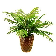 Designs by Lauren Artificial Phoenix Palm Plant
