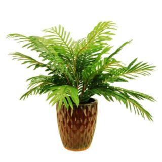 Designs by Lauren Artificial Phoenix Palm Plant