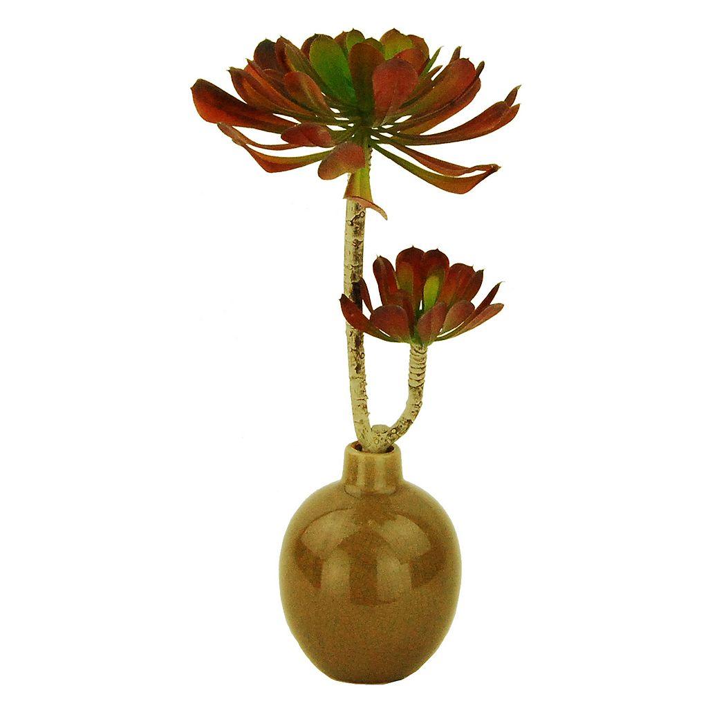 Designs by Lauren Artificial Succulent Plant