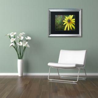 Trademark Fine Art Black Eyed Susan Silver Finish Framed Wall Art