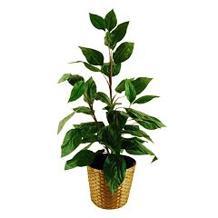 Designs by Lauren Artificial Philodendron Floor Plant