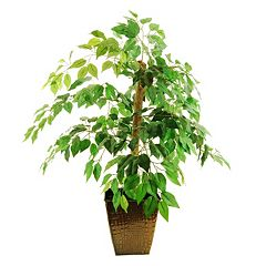 Designs by Lauren Artificial Ficus Tree
