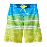 Boys 4-7 ZeroXposur Sharks & Striped Abstract Swim Trunks