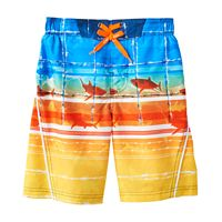 Boys 4-7 ZeroXposur Sharks & Striped Abstract Swim Trunks
