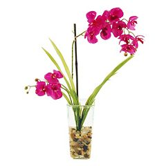 Designs by Lauren Artificial Phalaenopsis Orchids & Faux Bamboo Arrangement