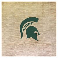 Michigan State Spartans 8' x 8' Portable Tailgate Floor