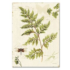 Trademark Fine Art Ivies and Ferns I Canvas Wall Art