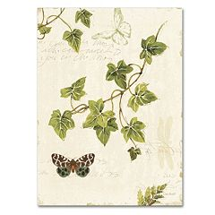 Trademark Fine Art Ivies and Ferns II Canvas Wall Art