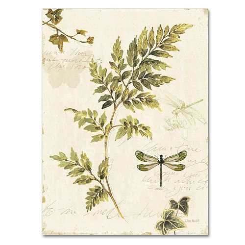 Trademark Fine Art Ivies And Ferns Iii Canvas Wall Art by Kohl's