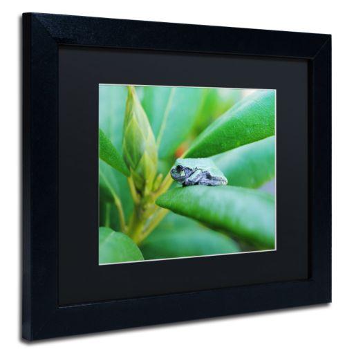 Trademark Fine Art Balance Black Framed Wall Art