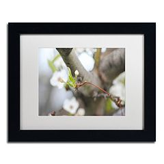 Trademark Fine Art Before Bloom Black Framed Wall Art