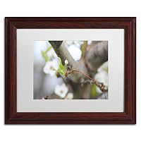 Trademark Fine Art Before Bloom Wood Finish Framed Wall Art