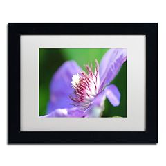 Trademark Fine Art Clarity Black Framed Wall Art