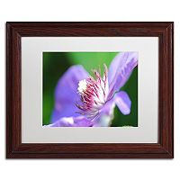 Trademark Fine Art Clarity Wood Finish Framed Wall Art