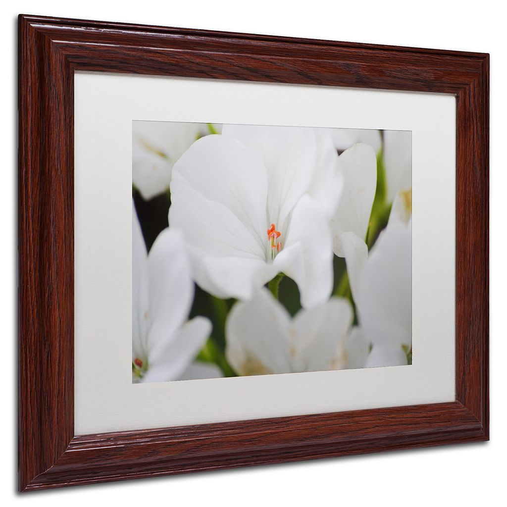 Trademark Fine Art Clustered Wood Finish Framed Wall Art