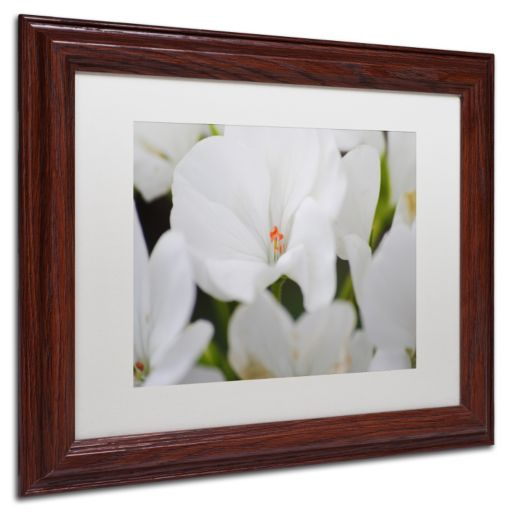 Trademark Fine Art Clustered Wood Finish Framed Wall Art