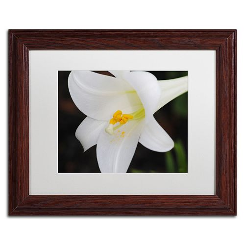 Trademark Fine Art Easter Framed Wall Art