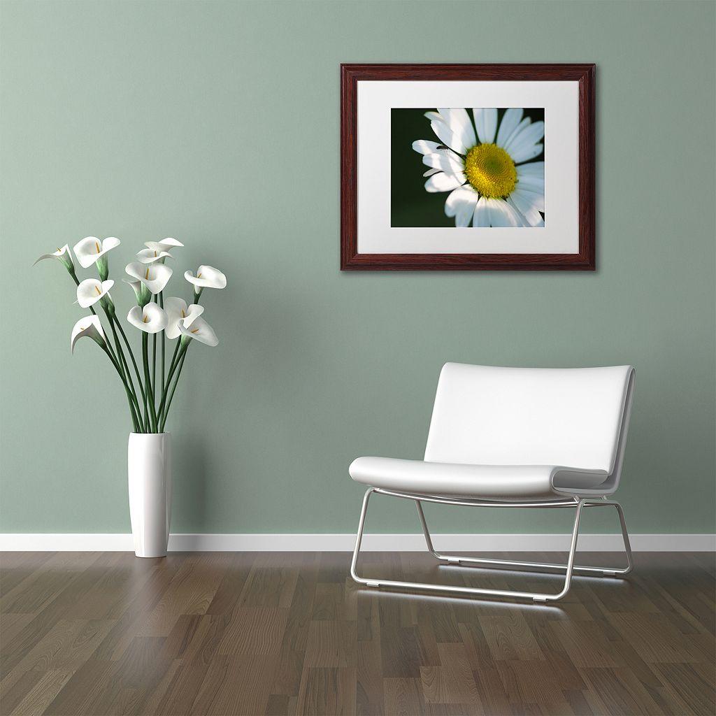 Trademark Fine Art Hidden in Shadows Wood Finish Framed Wall Art