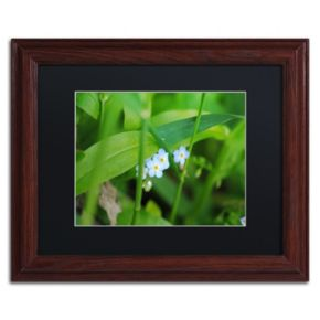 Trademark Fine Art Limited Perfection Wood Finish Framed Wall Art