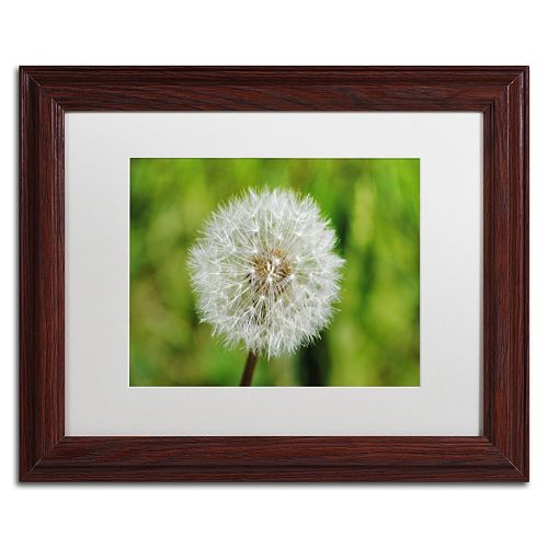 Trademark Fine Art Make a Wish Wood Finish Framed Wall Art