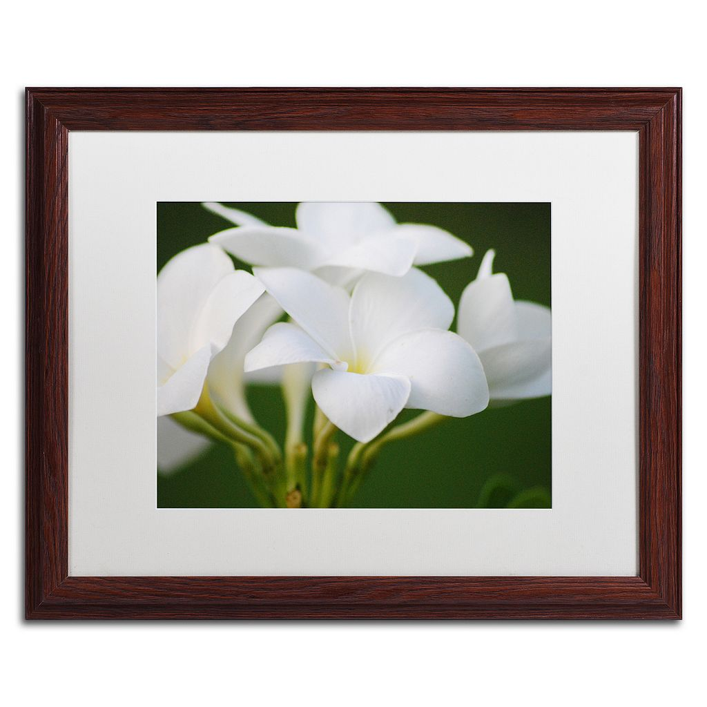 Trademark Fine Art Picture Perfect Matted Framed Wall Art