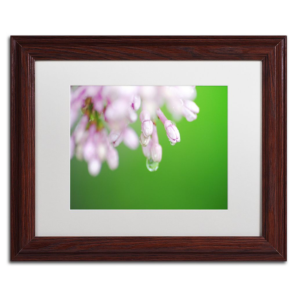 Trademark Fine Art Pure Matted Framed Wall Art