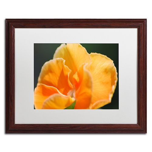 Trademark Fine Art Simple Compassion Matted Framed Wall Art