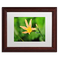 Trademark Fine Art Sweet Spice Matted Framed Wall Art