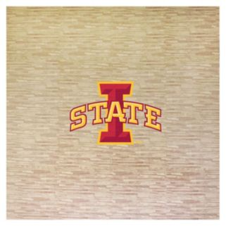 Iowa State Cyclones 8' x 8' Portable Tailgate Floor