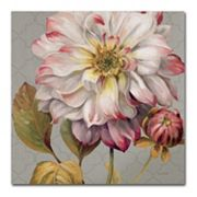 Trademark Fine Art Classically Beautiful II Canvas Wall Art