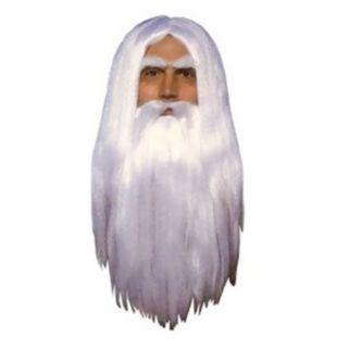 Adult Merlin Wizard Costume Wig & Beard