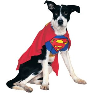 Pet DC Comics Superman Costume