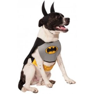 Pet DC Comics Batman Costume