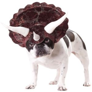 Pet Triceratops Dog Costume