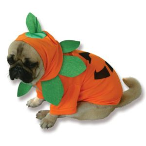 Pet Pumpkin Costume