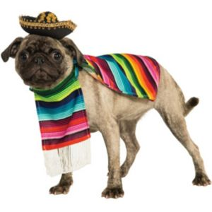 Pet Poncho & Sombrero Costume