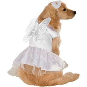 Pet Angel Costume