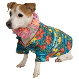 Pet Luau Jacket & Lei Costume