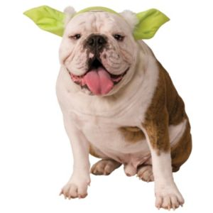 Pet Star Wars Yoda Costume Headpiece