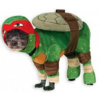 Pet Teenage Mutant Ninja Turtles Raphael Costume