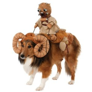 Pet Star Wars Bantha Rider Costume