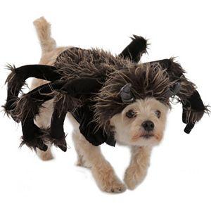 Pet Tarantula Costume