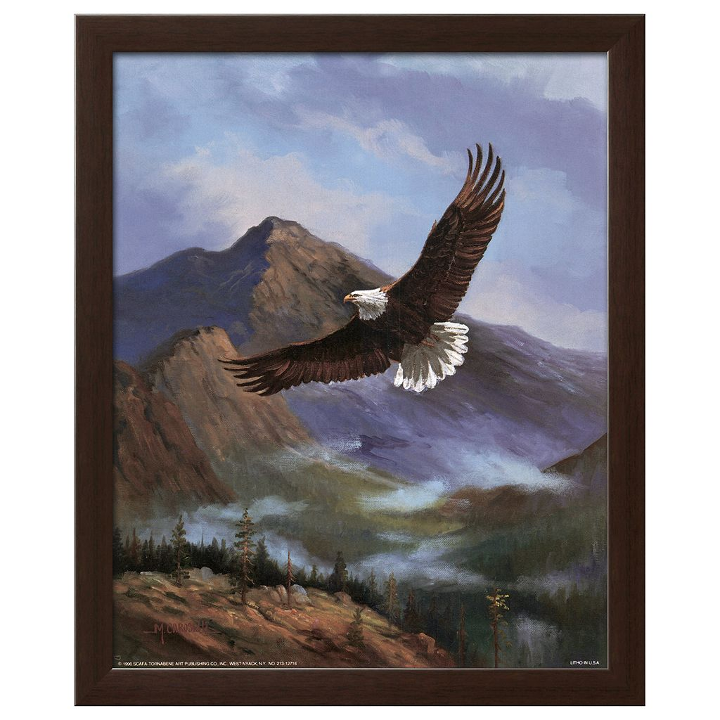 Art.com Eagle Gliding Framed Wall Art