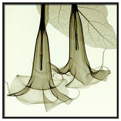 Art.com Datura Framed Wall Art