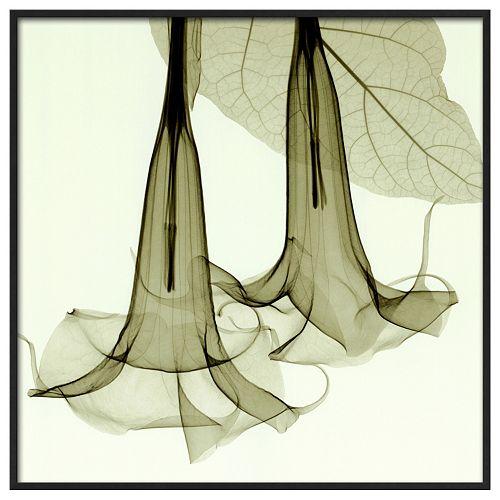 Art.com Datura Framed Wall Art
