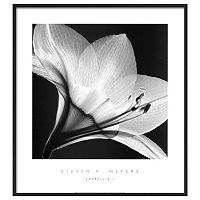 Art.com Amaryllis I Framed Wall Art