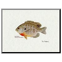 Art.com Bluegill Fish Wall Art